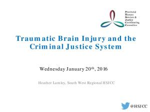 Traumatic Brain Injury and the Criminal Justice System