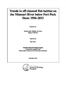 Trends in off-channel fish habitat on the Missouri River below Fort Peck Dam: