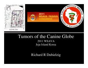Tumors of the Canine Globe 2011 WSAVA Jeju Island Korea. Richard R Dubielzig