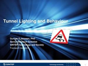 Tunnel Lighting and Behaviour