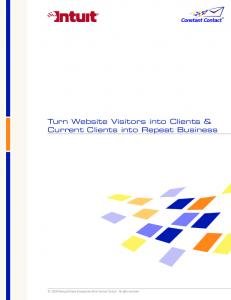 Turn Website Visitors into Clients & Current Clients into Repeat Business