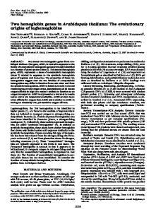 Two hemoglobin genes in Arabidopsis thaliana: The evolutionary origins of leghemoglobins