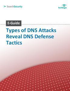 Types of DNS Attacks Reveal DNS Defense Tactics