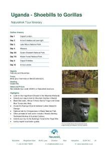 Uganda - Shoebills to Gorillas