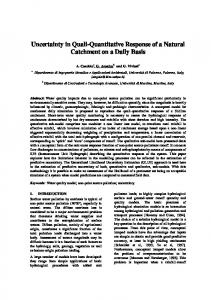 Uncertainty in Quali-Quantitative Response of a Natural Catchment on a Daily Basis