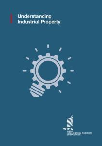 Understanding Industrial Property