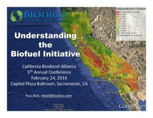 Understanding the Biofuel Initiative
