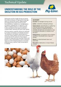 UNDERSTANDING THE ROLE OF THE SKELETON IN EGG PRODUCTION