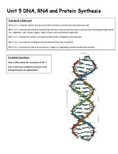 Unit 5 DNA, RNA and Protein Synthesis
