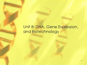 Unit 8: DNA, Gene Expression, and Biotechnology
