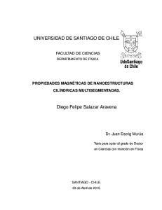 UNIVERSIDAD DE SANTIAGO DE CHILE. Diego Felipe Salazar Aravena