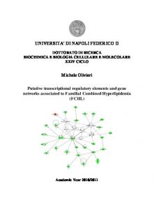UNIVERSITA DI NAPOLI FEDERICO II. Michele Olivieri