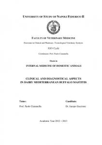 UNIVERSITY OF STUDY OF NAPOLI FEDERICO II