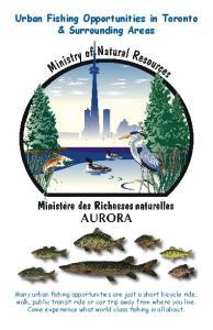 Urban Fishing Opportunities in Toronto & Surrounding Areas