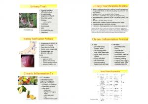 Urinary Tract Materia Medica. Urinary Tract. Chronic Inflammation Protocol. Chronic Inflammation Tx. Kidney Tonification Protocol