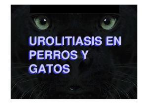 UROLITIASIS EN PERROS Y GATOS