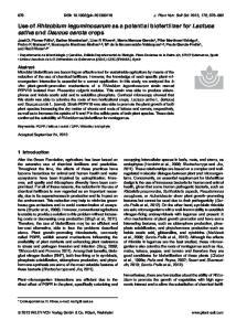 Use of Rhizobium leguminosarum as a potential biofertilizer for Lactuca sativa and Daucus carota crops