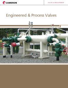 VALVES & MEASUREMENT. Engineered & Process Valves