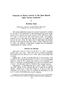Variations in Mitotic Activity of Rat Bone Marrow under Various Conditions