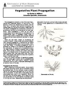Vegetative Plant Propagation
