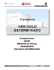VEHICULO DETERMINADO