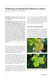 Verbreitung und Genetik des Feldahorns in Bayern