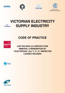 VICTORIAN ELECTRICITY SUPPLY INDUSTRY