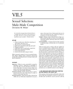 VII.5. Sexual Selection: Male-Male Competition Christine W. Miller