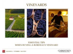 VINEYARDS ESSENTIAL TIPS WHEN BUYING A BORDEAUX VINEYARD