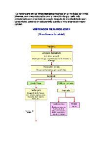 VINIFICACION EN BLANCO JOVEN