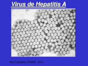 Virus de Hepatitis A