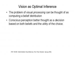 Vision as Optimal Inference