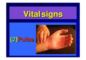 Vital signs (2)Pulse