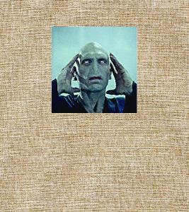 Voldemort alebo odvaha a bláznovstvo nazývať veci pravým menom
