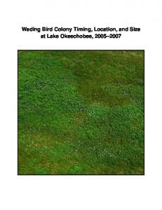 Wading Bird Colony Timing, Location, and Size at Lake Okeechobee,