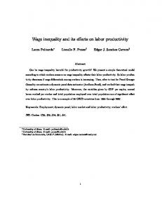 Wage inequality and its effects on labor productivity