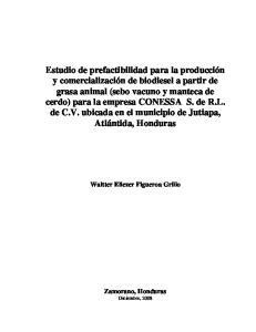 Waltter Eliezer Figueroa Grillo