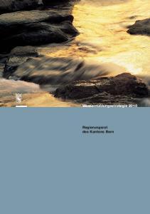 Wassernutzungsstrategie Regierungsrat des Kantons Bern