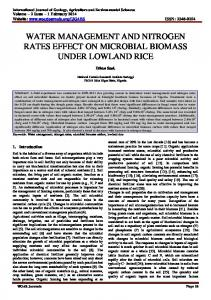 WATER MANAGEMENT AND NITROGEN RATES EFFECT ON MICROBIAL BIOMASS UNDER LOWLAND RICE