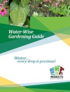 Water-Wise Gardening Guide
