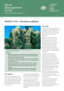 Weed Management Guide Weed of National Significance