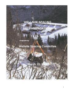 WELLSITE SPACING RECOMMENDATIONS. Wellsite Spacing Committee