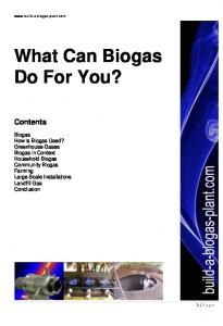 What Can Biogas Do For You?
