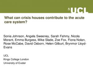 What can crisis houses contribute to the acute care system?