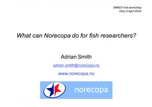 What can Norecopa do for fish researchers?