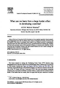 What can we learn from a large border effect in developing countries?