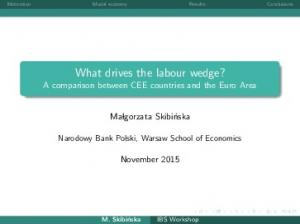 What drives the labour wedge? A comparison between CEE countries and the Euro Area