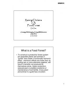 What is a Food Forest?
