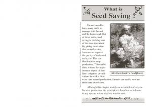 What is. Seed Saving?