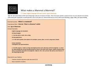 What makes a Mammal a Mammal?